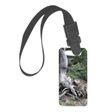 tree roots Luggage Tag