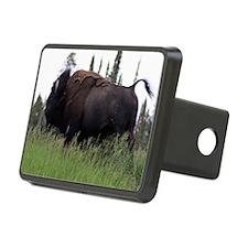 bull buffalo Hitch Cover