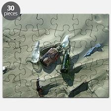 DSCF4386 Puzzle