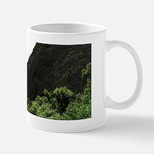 iao2 Mug