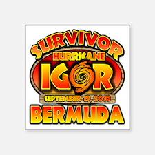 """igor_cp_bermuda Square Sticker 3"""" x 3"""""""