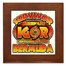 igor_cp_bermuda Framed Tile