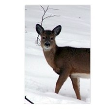 hunting_cookbook_back cop Postcards (Package of 8)