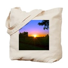 sunrise 9-15-10 Tote Bag
