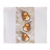 Horseshoe crab Blankets