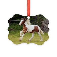 ic_10 Ornament