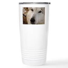 2011_2 Travel Coffee Mug