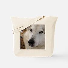 2011_2 Tote Bag