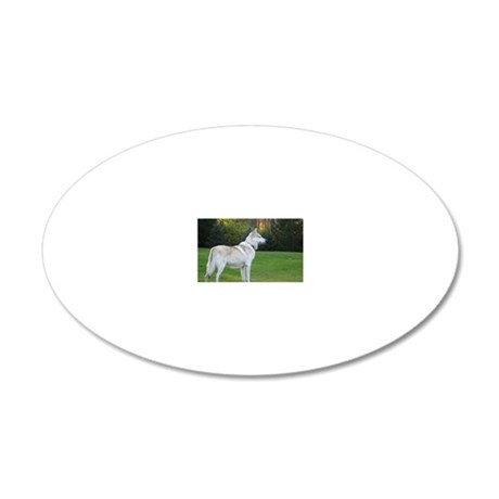 2011_4 20x12 Oval Wall Decal
