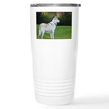 2011_4 Travel Mug