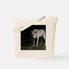 2011_5 Tote Bag