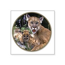 "yule mt lions Square Sticker 3"" x 3"""