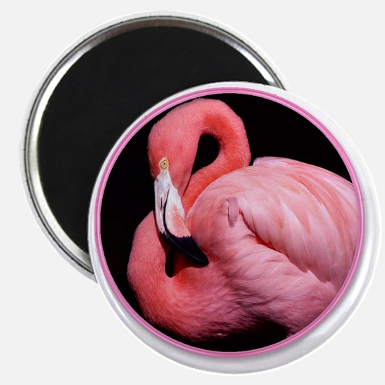 yule flamingo Magnet