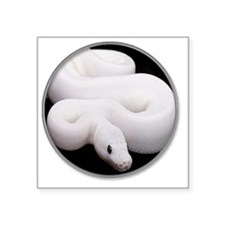 "yule snake2 Square Sticker 3"" x 3"""