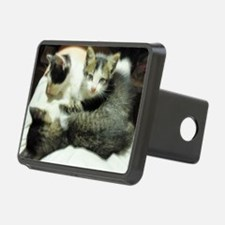 lap time Hitch Cover