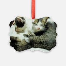 lap time Ornament
