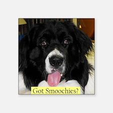 "Got Smoochies? Square Sticker 3"" x 3"""