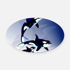 Killer Whale Family-Yardsign Oval Car Magnet