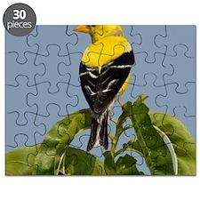 Goldfinch Puzzle