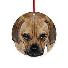 fwankie2 Round Ornament