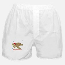 Personalized Christmas Sea Turtle Boxer Shorts