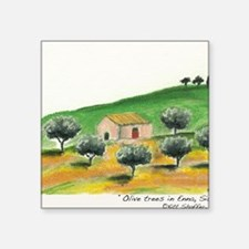 "IMG_0054-olive trees in Enn Square Sticker 3"" x 3"""