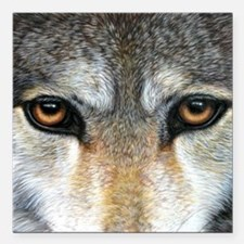 """Wolf Eyes  1000 Square Car Magnet 3"""" x 3"""""""