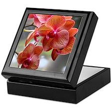 Cymbidium Orchids Keepsake Box