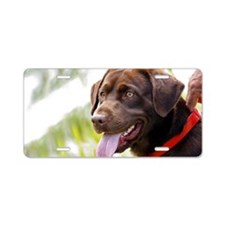 11x17 choc lab Aluminum License Plate