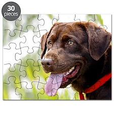 11x17 choc lab Puzzle