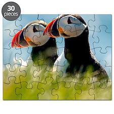 Puffin Pair 14x14 600 dpi Puzzle