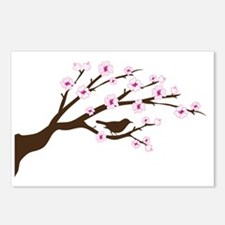 cherry blossoms 2 Postcards (Package of 8)