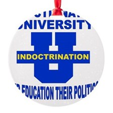 INDOCTRINATION UNIVERSITY OUR EDUCA Ornament
