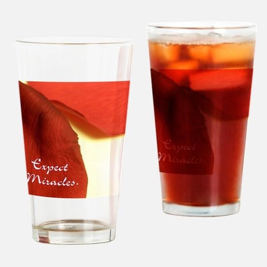 redrosepetals Drinking Glass