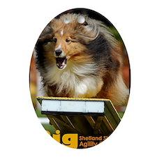 Shetland Sheepdog Agility Calendar Oval Ornament