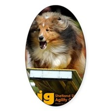 Shetland Sheepdog Agility Calendar Decal