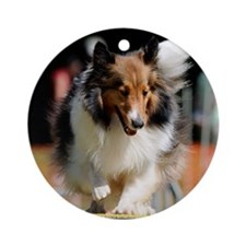 Shetland Sheedog Agility Beau Round Ornament