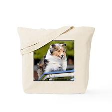 Sheltie Agility Jive Tote Bag