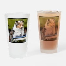 Sheltie Agility Jive Drinking Glass