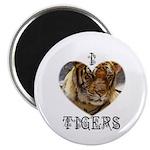 TIGERS ROCK Magnet