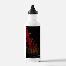 crocoite-adelaidemine Water Bottle
