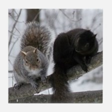 Squirrels chatting Tile Coaster