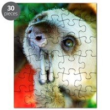 Pensive Sloth On Puzzle