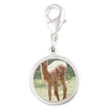 sugbaby Silver Round Charm
