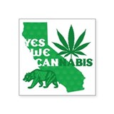 California weed Square