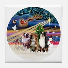 Xmas Magic - Aussie Shepherds (three) Tile Coaster