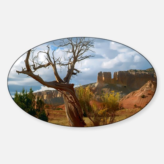 Abiquiu-10b- 022 Sticker (Oval)