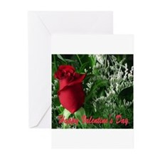 Unique Hybrid roses Greeting Cards (Pk of 10)