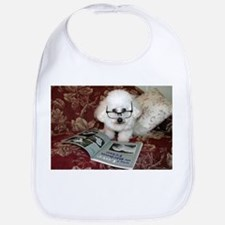 You just Gotta Love a Bichon  Bib