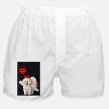 You just Gotta Love a Bichon  Boxer Shorts